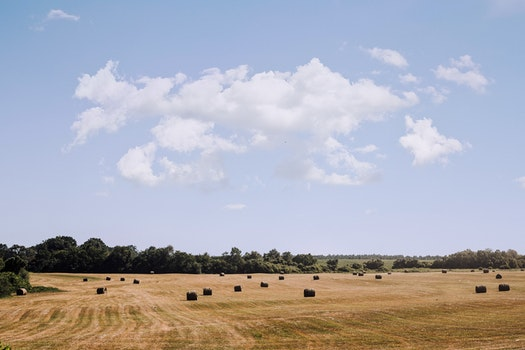 Free stock photo of clouds, field, hay bales, country