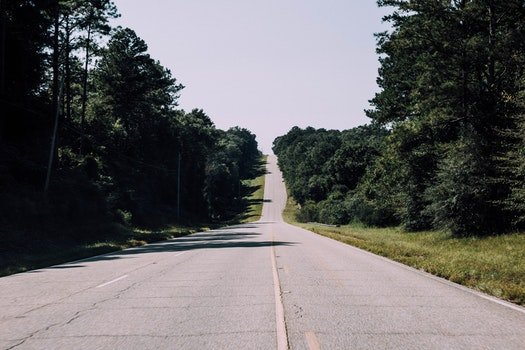Free stock photo of road, trees, hill