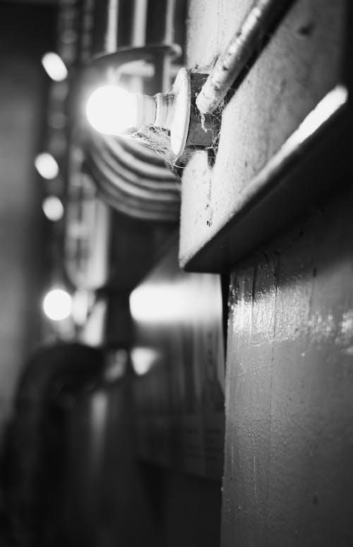 Free stock photo of alcatraz, alone, answer, black