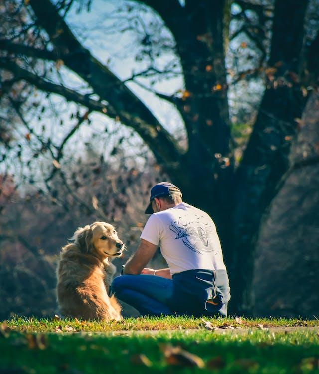 Man sitting near dog in park