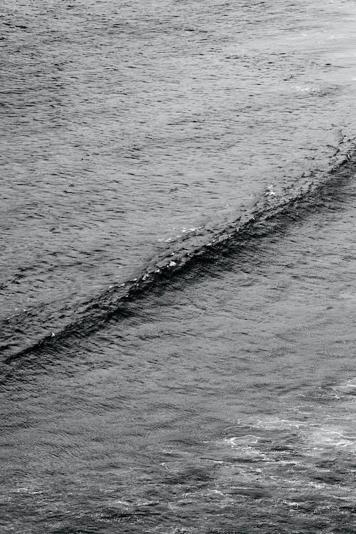 Ocean wave rolling near shore in sunlight