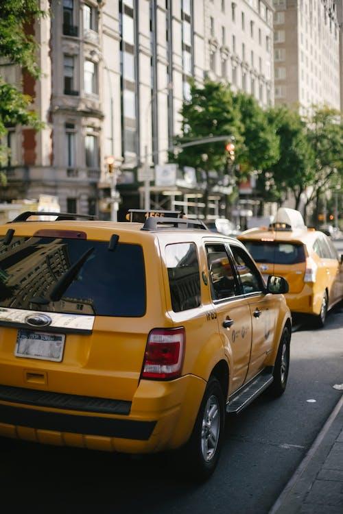 SUV, 交叉, 區域, 反射 的 免费素材图片
