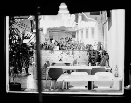 Black and white of bearded young male surfing internet of mobile phone at table in cafe with potted plants