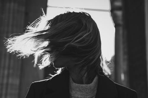 Foto d'estoc gratuïta de a l'aire lliure, adult, cabell