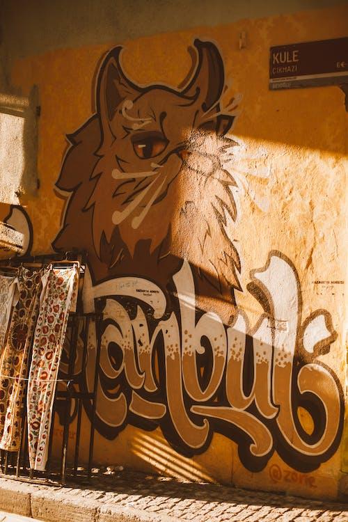 Безкоштовне стокове фото на тему «бетон, вивіски, графіті»