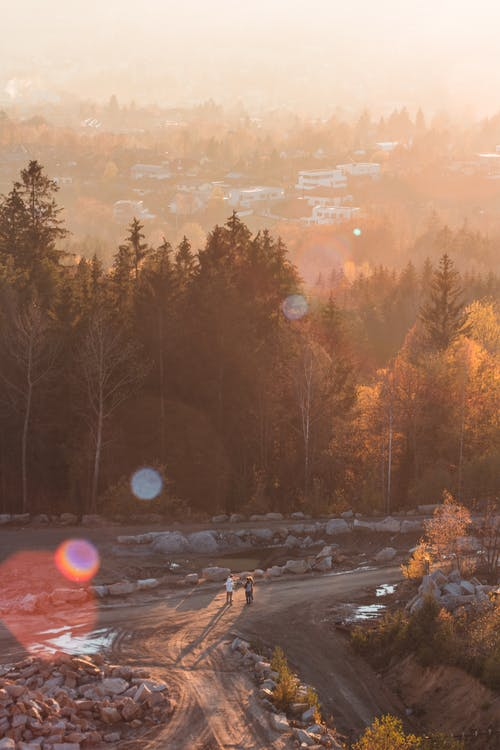 Free stock photo of bright sun, fog, lensflare
