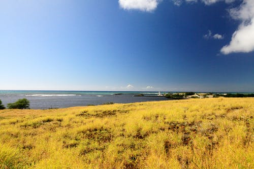 คลังภาพถ่ายฟรี ของ กลางแจ้ง, ชายทะเล, ทะเล, ธรรมชาติ