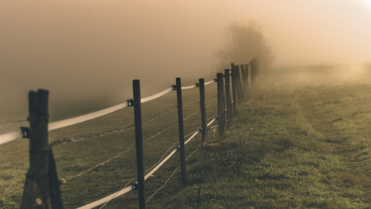 Narrow path near fence and meadow in fog