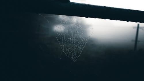 Thin spider web on beam in misty weather