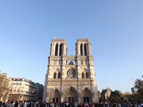 Free stock photo of church, notre dame, notre dame de paris