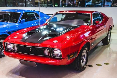 Free stock photo of automobile, automobiles, classic cars