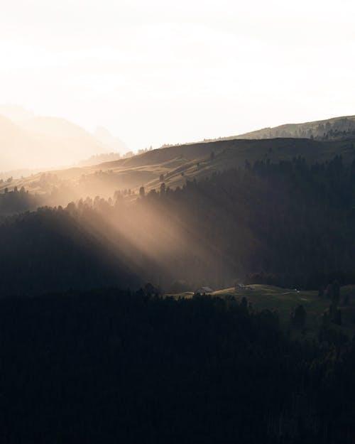 Бесплатное стоковое фото с вечер, гора, дерево, долина