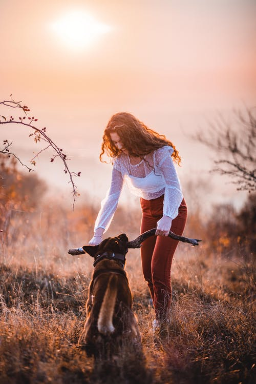 Woman in White Long Sleeve Shirt Holding Brown Short Coated Dog