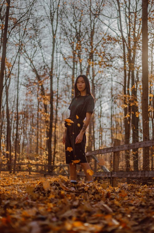 Full body emotionless Asian female in black dress standing in sunny autumn woodland during leaf fall and looking at camera