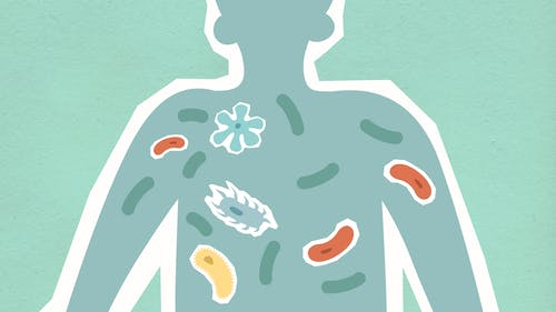 Cutout paper illustration of person with bacilli in body