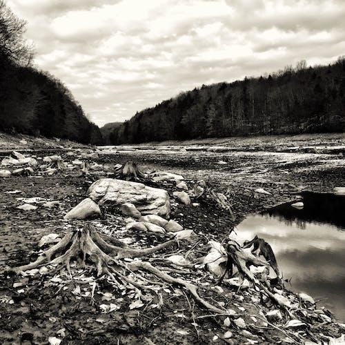 天空, 岩石, 思考, 景觀 的 免费素材照片