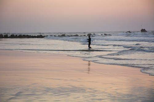 Photos gratuites de activité, aube, bord de mer