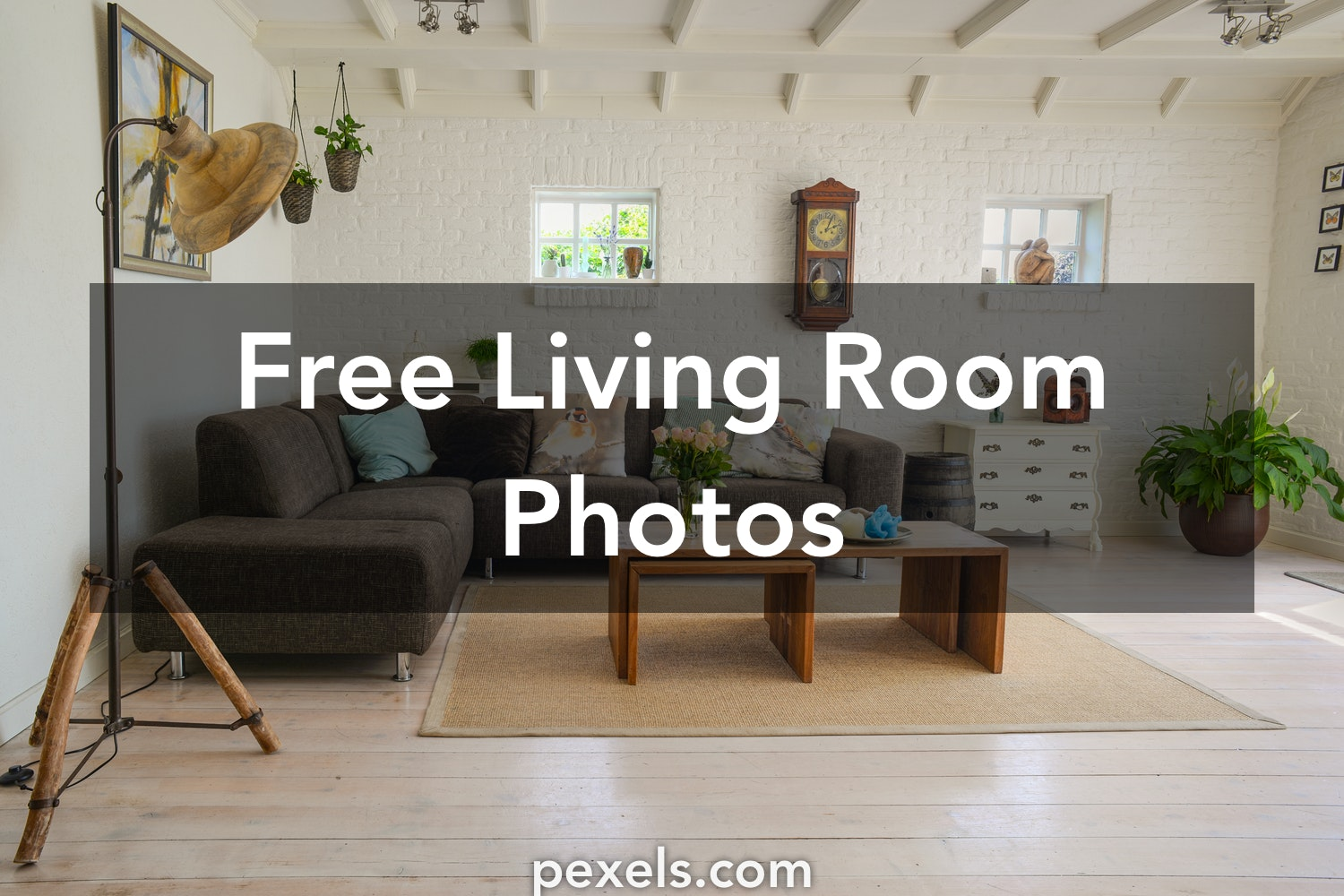 1000 Beautiful Living Room Photos