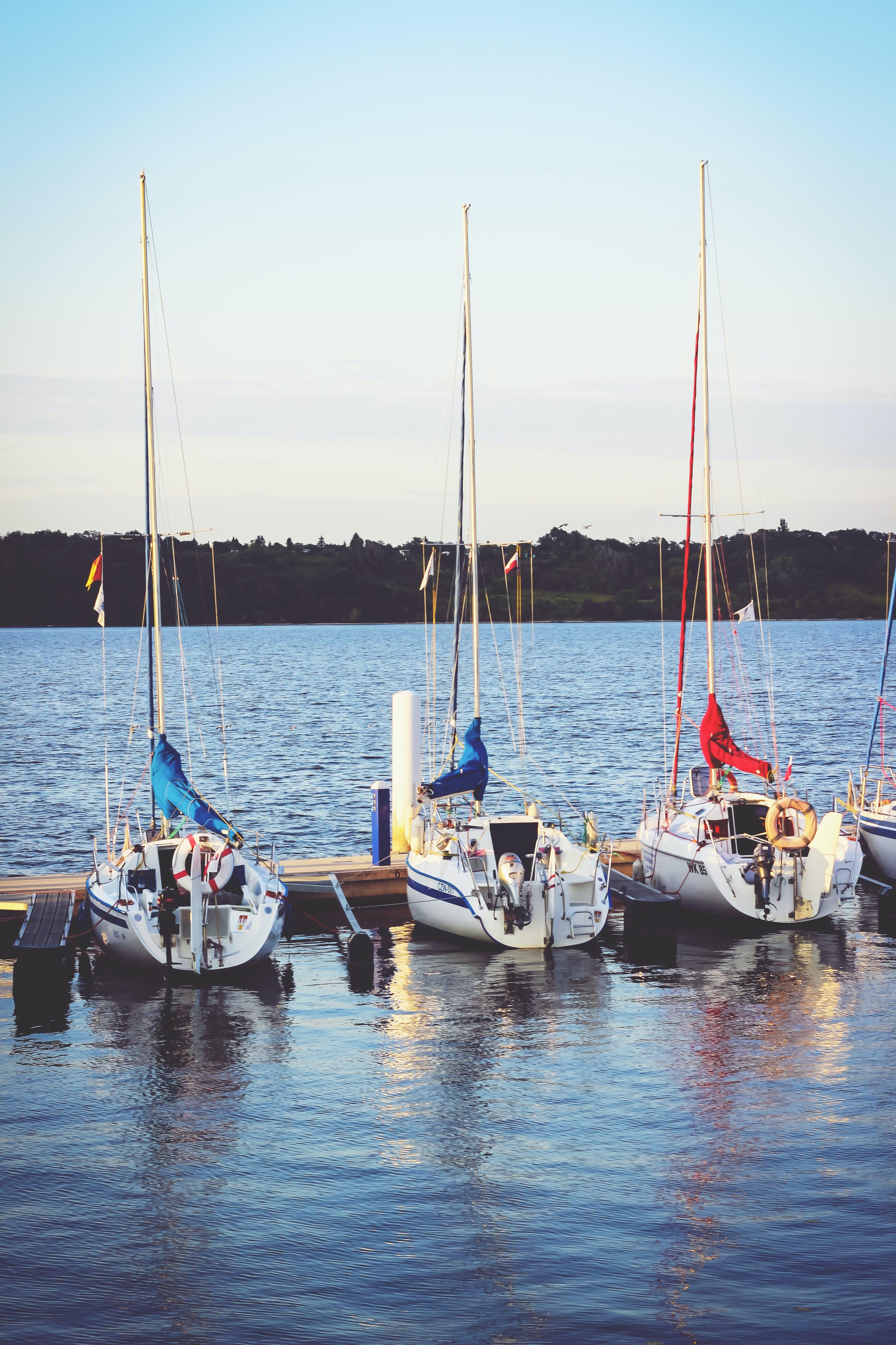 Δωρεάν στοκ φωτογραφιών με βάρκες, θάλασσα, ιστιοπλοϊκά, κρασί Πόρτο