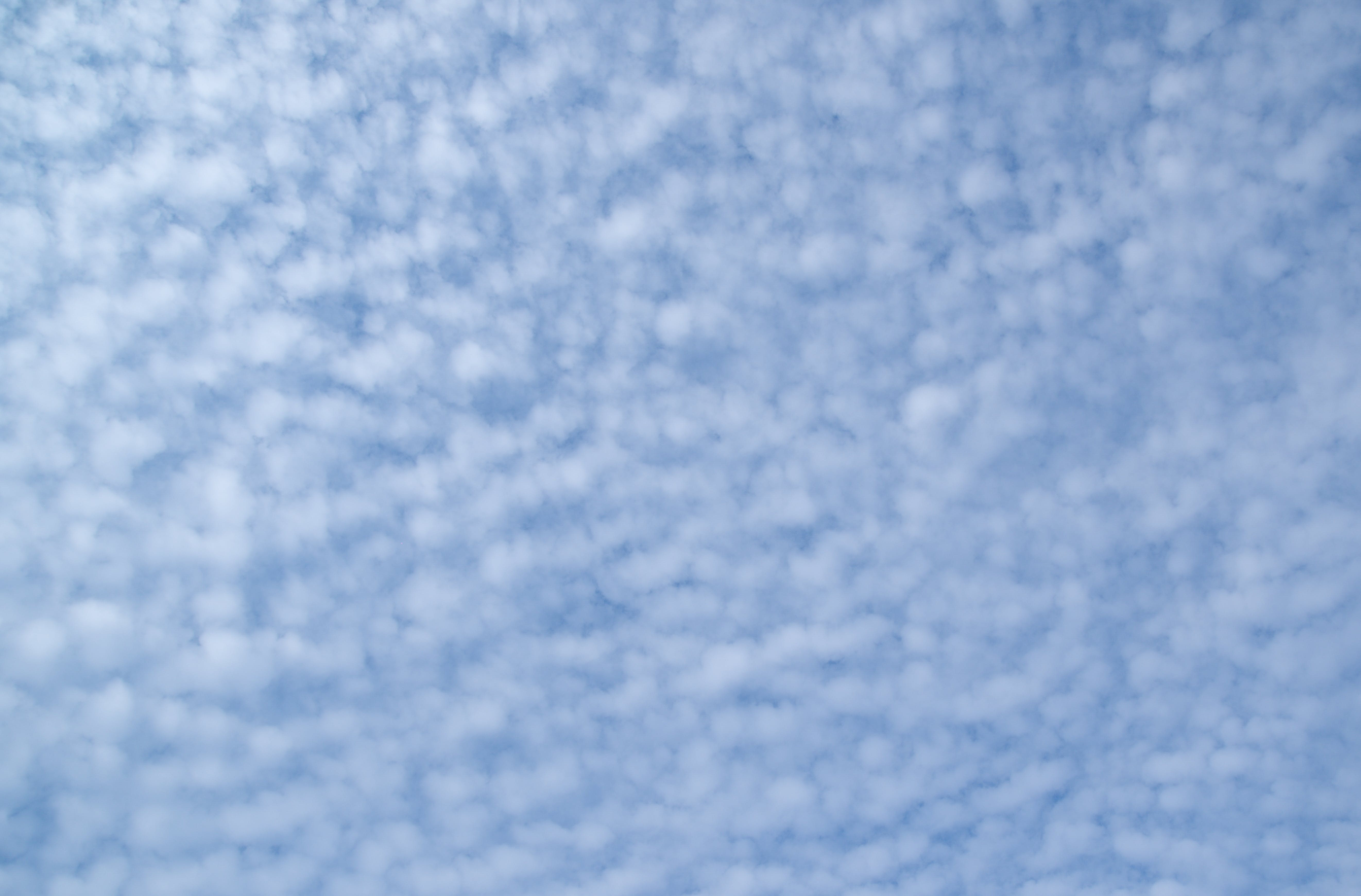 Low Angle View Photography of Cirrus Clouds