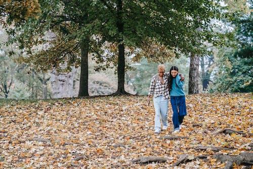 Immagine gratuita di abbraccio, affetto, albero, amante