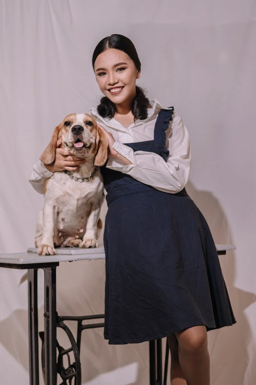 Woman in Blue Dress Hugging Brown and White Short Coated Dog