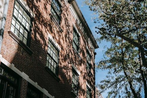 从下面, 低角度, 住, 住宅 的 免费素材图片