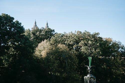 Türme Hinter Dem Park Mit Brunnen Und Bäumen