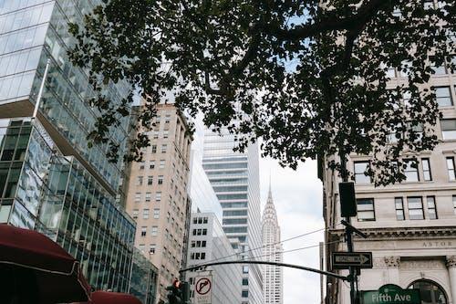Nowoczesna Ulica Miasta Z Drapaczami Chmur