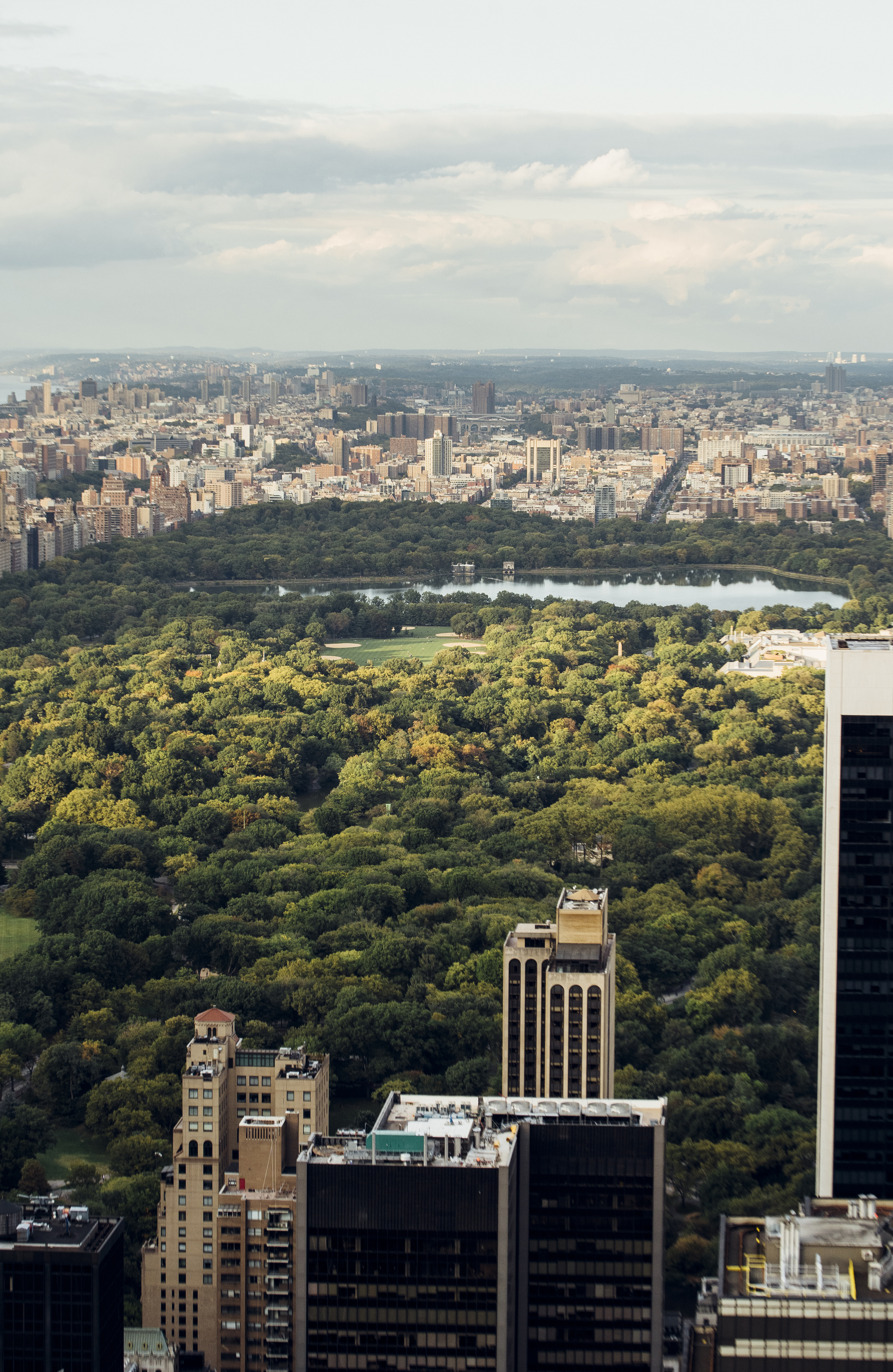 central park with skyscrapers in new york city