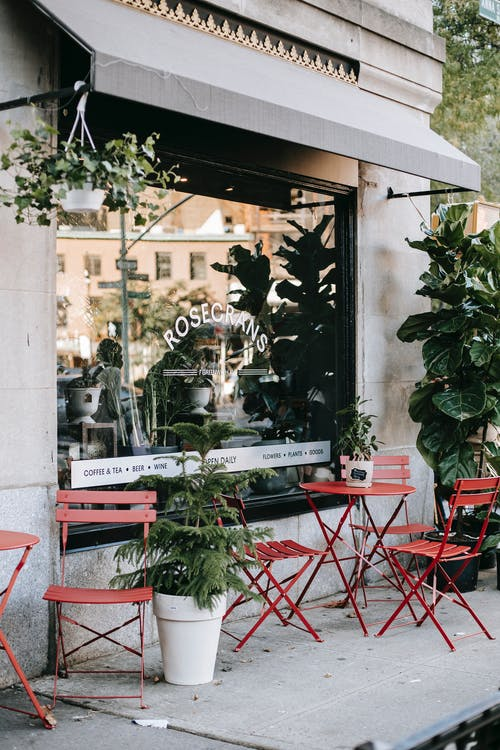 Simple red chairs and tables placed on terrace of stylish cafe decorated with green potted plants on city street