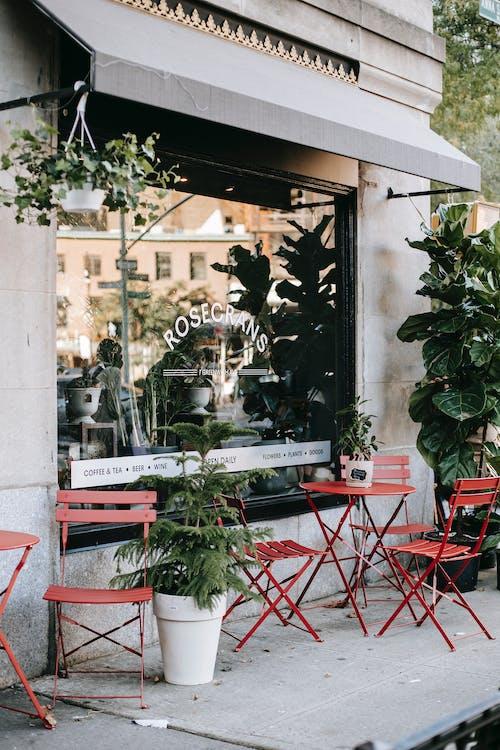 Cafétéria De Rue Confortable Avec Des Meubles Minimalistes Et Des Plantes Vertes Au Soleil