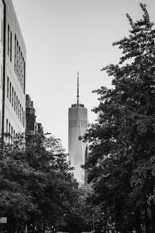 現代摩天大樓自由塔放置在大都市的市中心