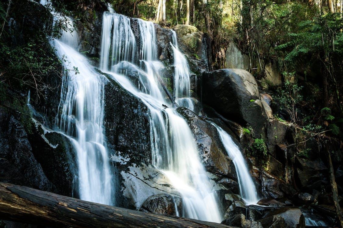 Immagine gratuita di acqua, alberi, cascata