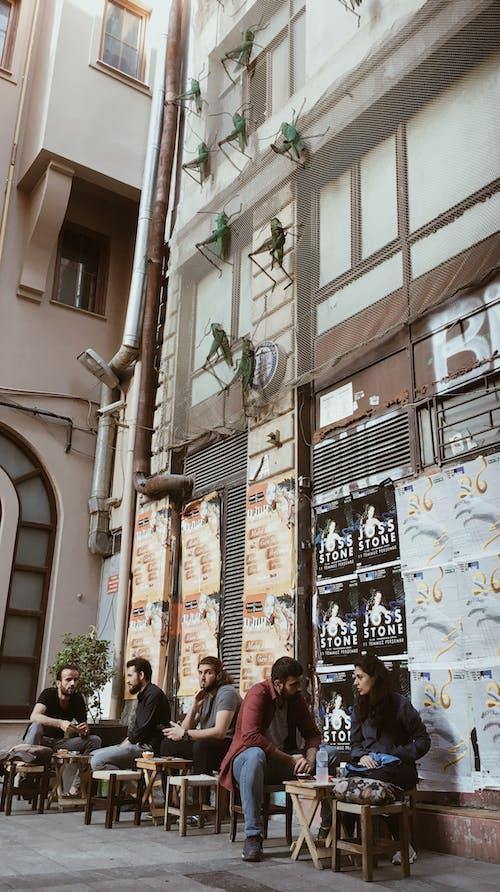 Základová fotografie zdarma na téma akcie, architektura, bar, budova