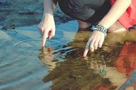 sea, nature, hands