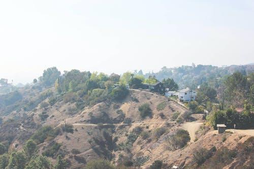 Kostnadsfri bild av hollywood, öken, runyon canyon, vandra