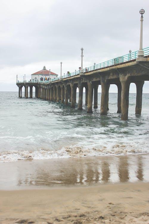 ドック, ビーチ, 岸, 日光の無料の写真素材