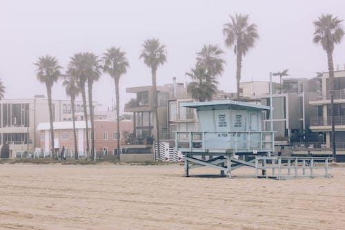 Ảnh lưu trữ miễn phí về ánh sáng ban ngày, Bãi biển Venice, biển, bờ biển