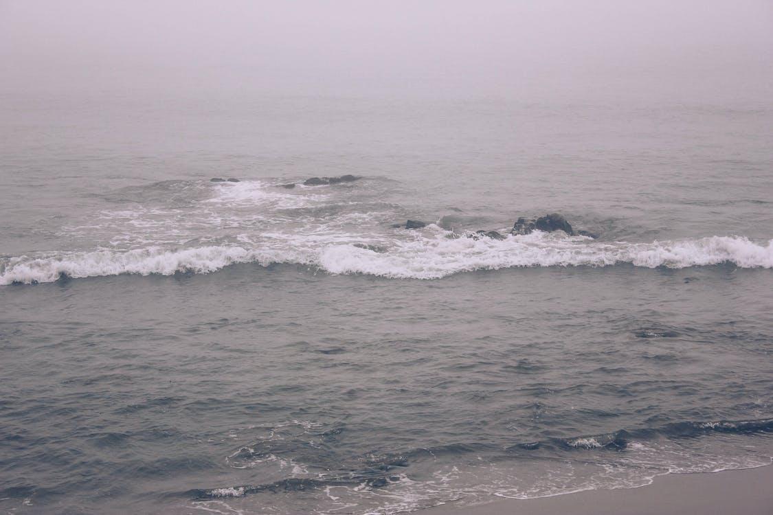 breh, krajina pri mori, mávať