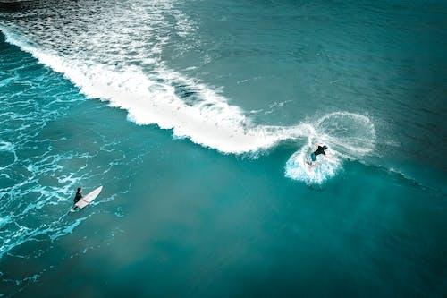 Kostnadsfri bild av adrenalin, aktiva, aktivitet