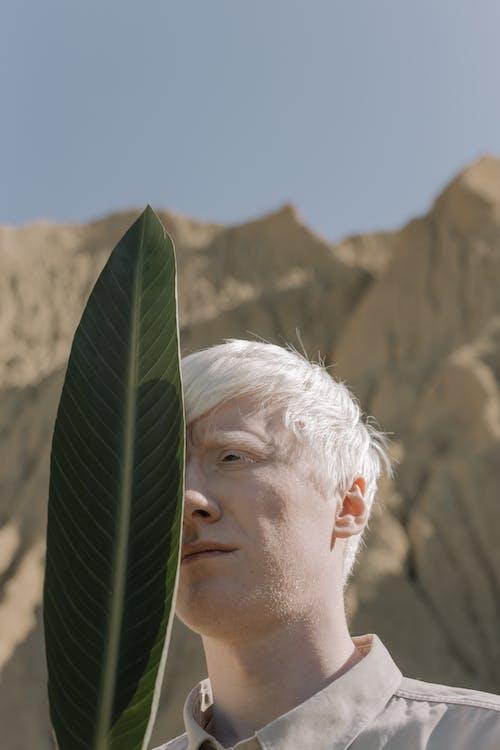 Foto d'estoc gratuïta de adult, albino, cabell blanc