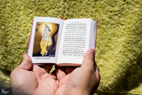 Free stock photo of geeta