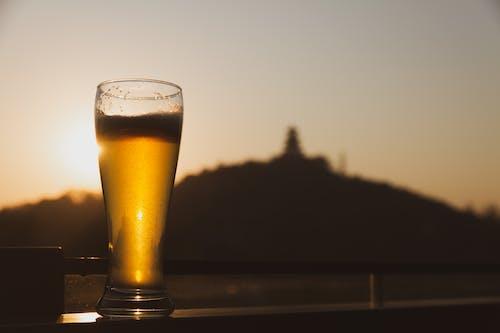 Photos gratuites de à contre-jour, ambre, aube, bière