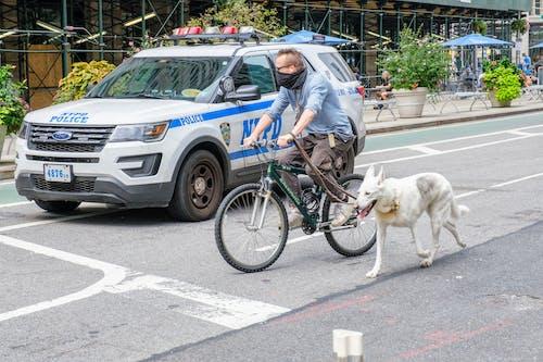 Free stock photo of bike, bike riding, city street