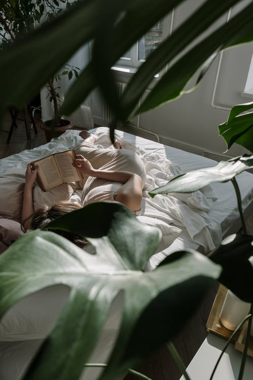 Woman Lying on Bed With Green Leaves