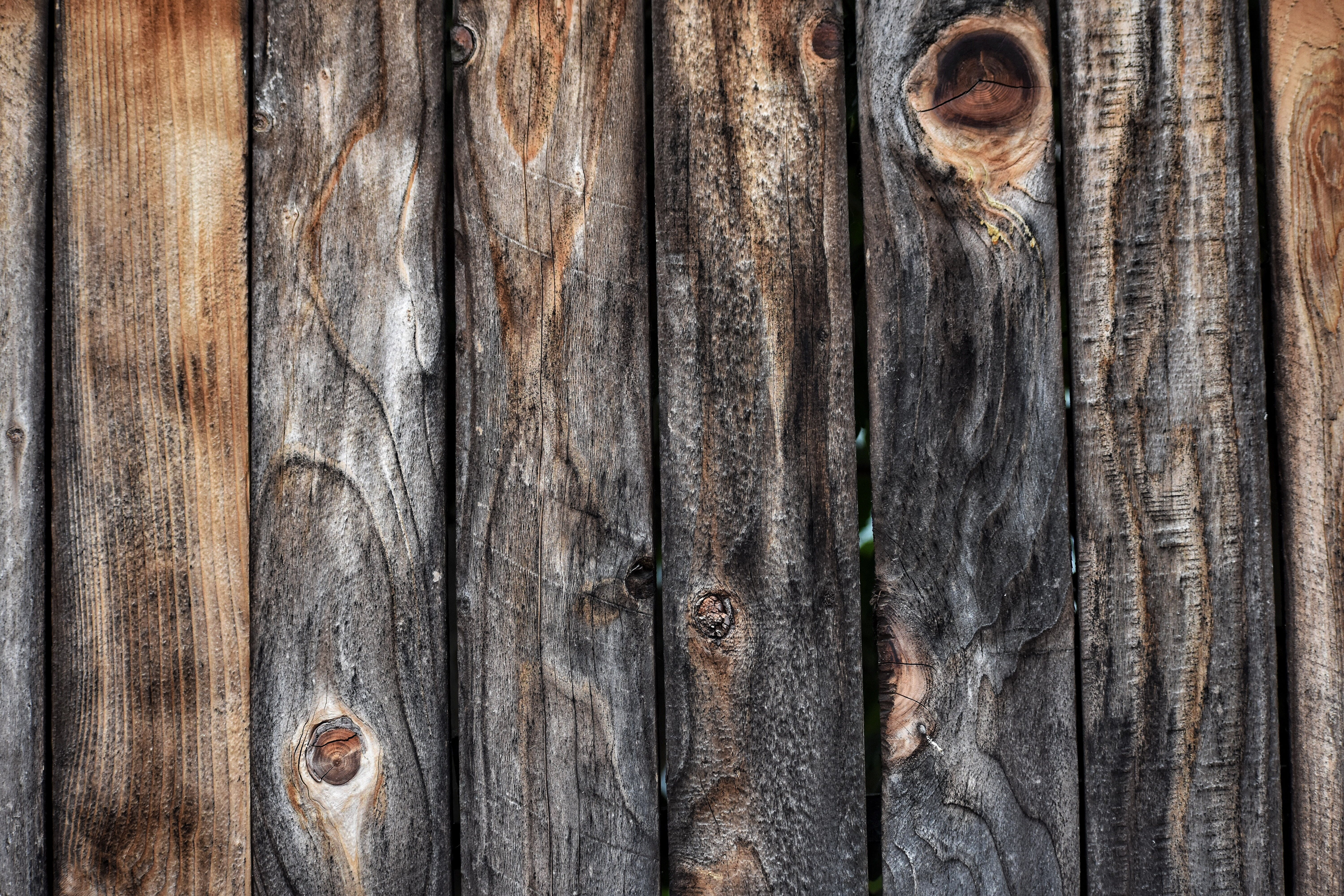 Free stock photo of back drop, dark, fence, old