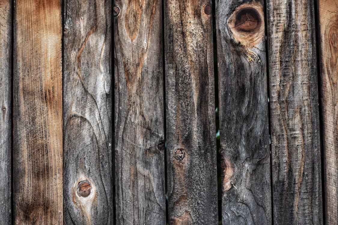 dřevěné textura, dřevěný plot, dřevo