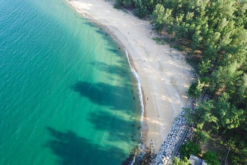 Aerial view of idyllic peaceful seashore covered with tropical vegetation and washed by azure transparent seawater on fair weather