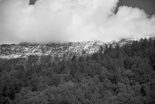 Kostenloses Stock Foto zu bäume, berge, bewölkt, draußen